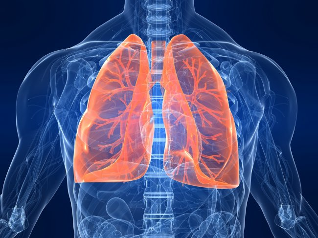 Pulmonary Diseases  >> Different Types Of Pulmonary Lung Diseases Vessel Medical