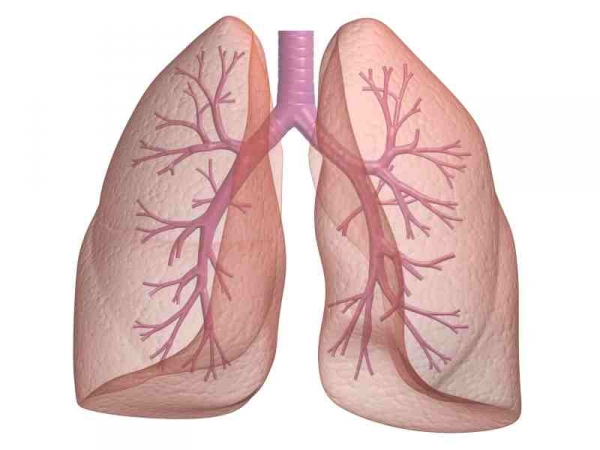 pulmonary-lung-function-tests-pfts-67-1345105192